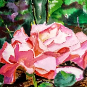 Rose/ Buschart Gardens B.C